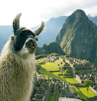 Machu Picchu Top Brasil Turismo