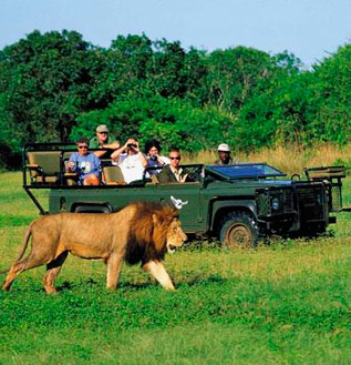África do Sul Top Brasil Turismo