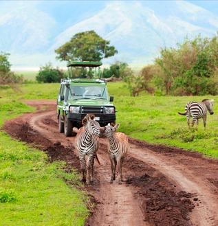 pacotes para tanzania