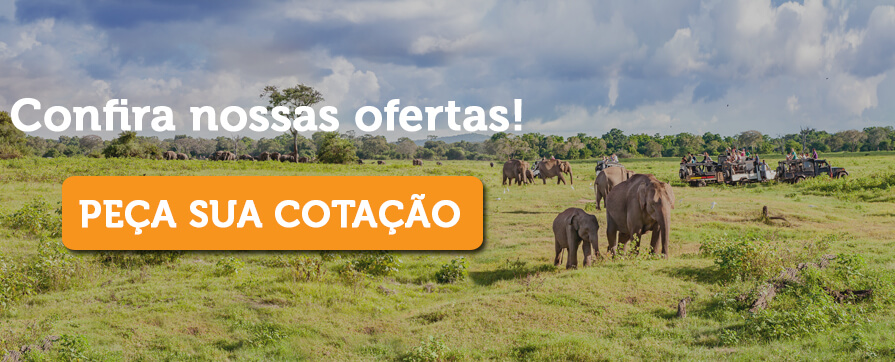 pacote africa do sul